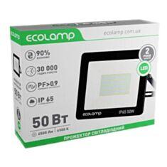 Прожектор ECOLAMP LED 50W 506500