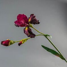 Штучна квітка Ірис 135F/red 104 см