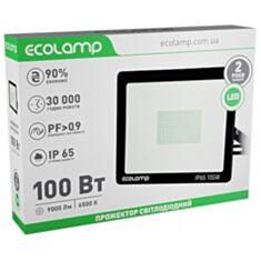 Прожектор ECOLAMP LED 100W 1006500