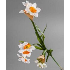 Штучна квітка Нарцис 1812 T 75см
