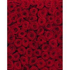 Фотошпалери Червоні троянди 4-077